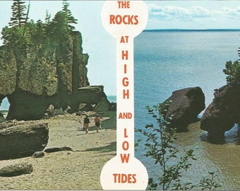 Vintage 1950s Postcard Hopewell Rocks Bay of Fundy New Brunswick Canada High and Low Tide Atlantic Maritime Card Photochrome Postally Unused