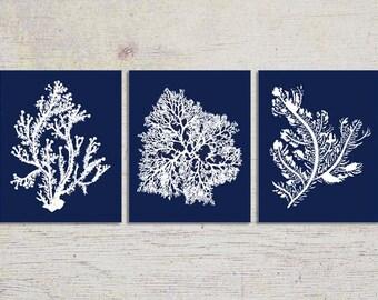 Blue Coral Wall Art, Navy Blue Coral Print, Navy White Wall Art, Navy Blue Home Decor, Coral Print, Set of three