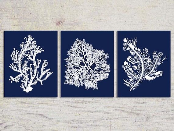 Blue Coral Wall Art Navy Blue Coral Print Navy White Wall