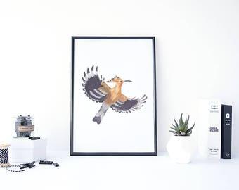 Hoopoe Bird, Hoopoe Poster, Bird Prints, European Birds, Woodland Creatures, Hoopoe Art, Bird Lover Gift