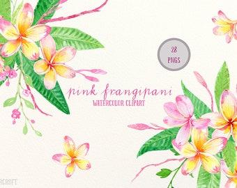 Frangipani Clip Art, Watercolor pink frangipani, green foliage, floral arranagments for instant download