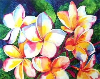 Frangipani flowers Plumeria painting ecoline draw