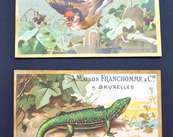 Antique French Advertising Trade Cards Paper Ephemera Scrapbooking Paper Craft Supplies Collectibles France Ads Lizard Bird Chocolate