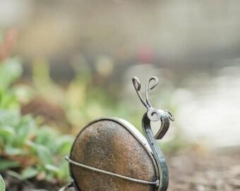 Rock Snail