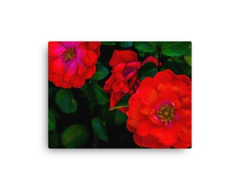 Vibrant Red Flowers | Canvas