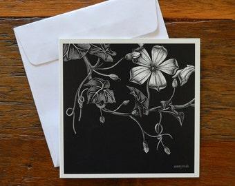 Gourd Flower - Greeting card 12.5cm x 12.5cm