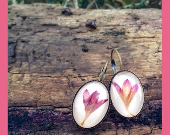 real flower earrings, terrarium earrings, summer jewelry gift, unique jewelry, botanical jewelry, gift for gardeners, romantic gift for her