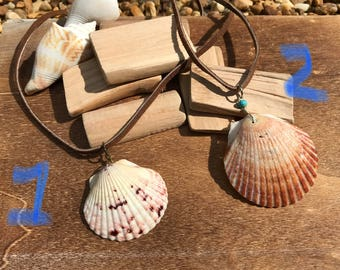 Sea shell pendant necklaces on suede cord