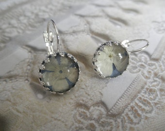 Snowball Bush Blossoms Atop Dusty Blue Under Glass Crown Bezel Leverback Victorian Pressed Flower Earrings-Symbolizes Thoughts of Heaven