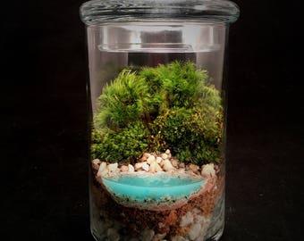 Terrarium // Beach Terrarium // Small Terrarium // Realistic Water Terrarium // Moss Terrarium // Terrarium Gift