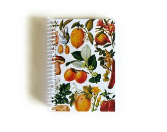 Fruits Notebook A6 Spiral Bound
