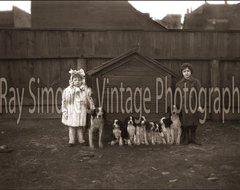Original FIne Art Large Format 31x21 Photograph Little Girl, Boy, 2 Dogs, & 6 Puppies c.1895 From Original Vintage 5x7 Glass Plate Negative