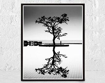 Black and white photography, minimalist print, nature decor, abstract wall art, minimalist photography, framed print, minimalist picture
