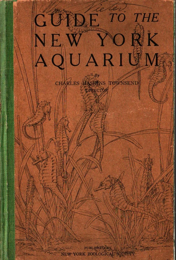 Guide to the New York Aquarium + Charles Haskins Townsend + 1929 + Vintage Science Book