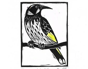 Linocut of a New Holland Honeyeater with Hand Painted Colour, Australian Bird Print, Printmaking, Lino Print