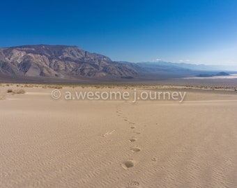 Tiny Footprints - Death Valley National Park - Framed Photography