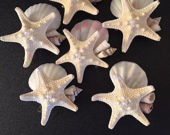 XoBouquets six seashell boutonniere