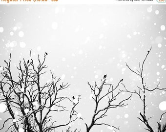 ON SALE black and white photography birds winter photography 8x10 24x36 fine art photography snow falling birds flying photography bokeh bla