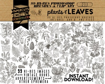 Plants & Leaves - 99 Hi-Res Photoshop Brushes / Clip Art / Image Pack - Includes .ABR and .PNG Files