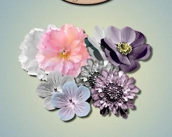 Digital Scrapbooking: Commercial Use Flower Pack 1