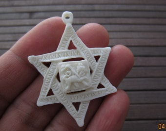 Lion of Judah Star of David Pendant S3845