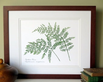 Pressed fern botanical print, matted 11x14, Mother fern, wall decor no. 0091