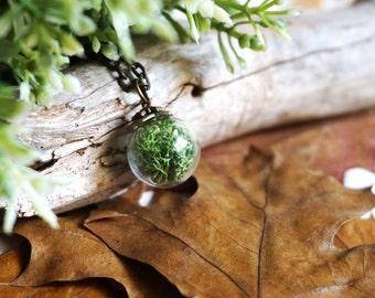 Real Moss Necklace Terrarium Necklace Green Plant Jewelry Glass Terrarium Jewelry Botanical Jewelry Glass Vial Necklace Terrarium Pendant