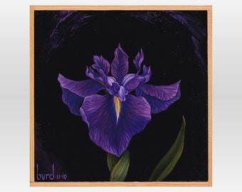 Bellender Blue Iris - Original Oil Painting on Wood 8x8