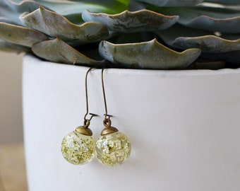 Flower earrings nature inspired jewelry, mothers day jewelry Pressed flower jewelry, Mom gift queens anne's lace, nature lover gift