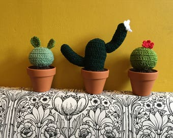 Crocheted cacti in terracotta pots. Fun home ornaments.