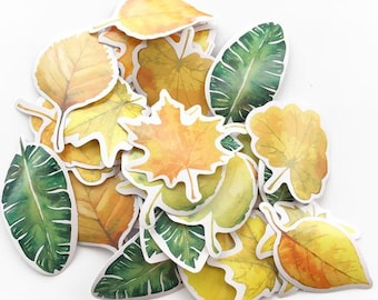 Fall Shower Label Stickers Box