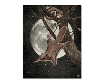 Squirrel Away - Collage Art Print - Animal, Wildlife, Nature, Space, Moon - Decorative Wall Art - Home Decor - Flying Squirrel Poster