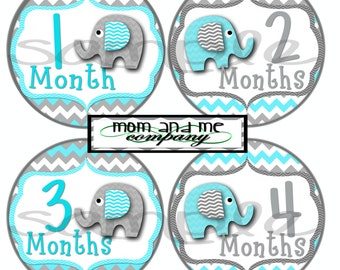 Baby Elephant Monthly Stickers Baby Stickers Baby Shower gift 1- 12 Months onepiece sticker infant monthly stickers bodysuit stickers