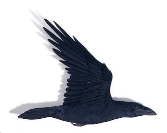 Blank Card - «En passant» (détail de Corbeau) - Sculpture en papier, impression