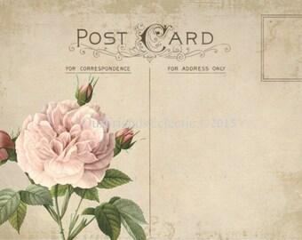 vintage postcard digital postcard printable blank postcard pink rose postcard blank digital postcard cu ok
