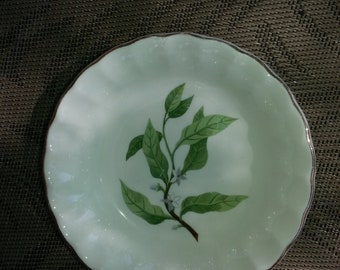 WS George Pottery Bolero Dessert Bowl