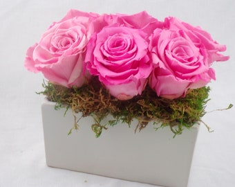 Preserved Rose Arrangement in Ceramic Vase
