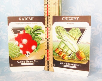Authentic Vintage Seed Packets NOS Chicory and Radish 1930s 1940s Card Seed Co. Freedonia N.Y.