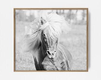 wild horse print, wild horse art, black horse art, horse print, horse art, printable horse, horse decor, horse wall print, horse wall art