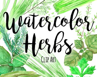 Watercolor Herbs ClipArt, Herbal Clip Art, Basil Leaf Clip Art, Recipes Clip Art, INSTANT DOWNLOAD, Watercolor ClipArt, Food Clipart Green