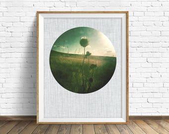 """nature photography, large art, large wall art, printable art, instant download printable art, nature prints, rustic - """"Pale Light of Summer"""""""