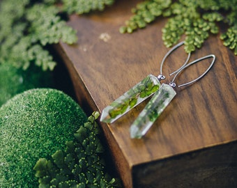Pressed Fern earrings Pressed Flower resin earrings Jewelry Terrarium Necklace Botanical