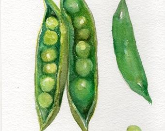 Petits pois anglais peinture aquarelle originale, légumes série 5 x 7 veggie art