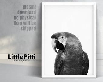 Parrot art, jungle wall art, parrot print, parrot wall art, nursery wall art, grey nursery art, summer print, print download, parrot gift