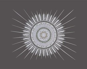 Circles Around The Sun - 16 x 20 inch Cut Paper Art Print