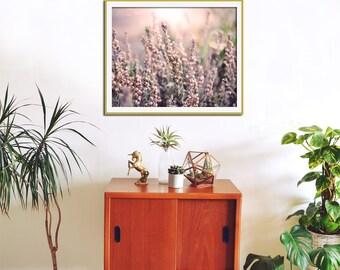 Nature Photography, Heather Art Print, Nature Art, Flower Wall Art, Pink, Shabby Chic, Wall Decor, Botanical Art, Nature Print - Splendor