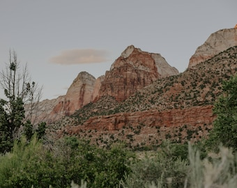 11x14 Print of Zion NP