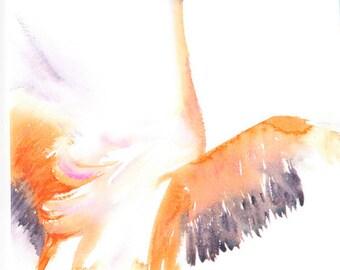 Flamingo - Blank Greetings Card, Bird Card, Watercolour Card, Watercolor Card, Flamingo Card