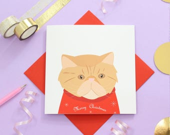 Christmas Persian cat card