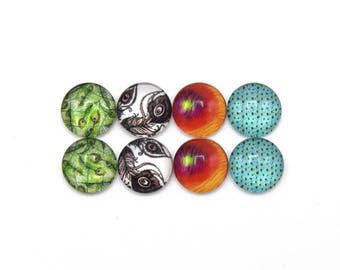 "8 round mixed glass cabochons 12mm feathers series 3 ""4"" - 8 round glass cabochons 12mm series feathers mixed 3 ""4""."